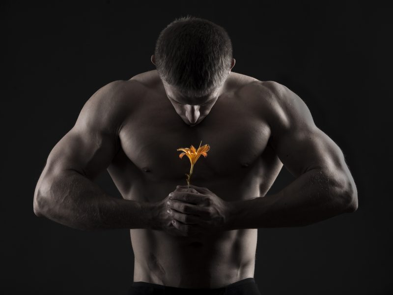 Обои цветок, Мушчина, мышцы