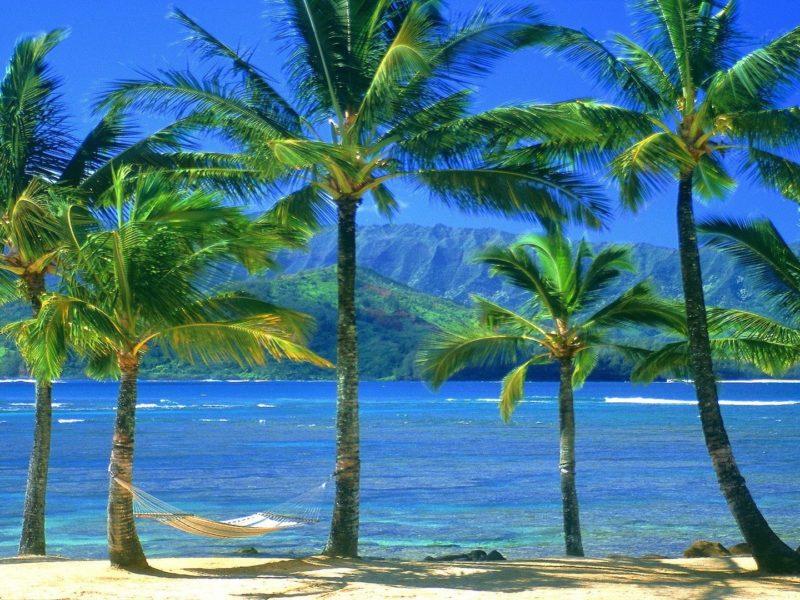 Природа, Пляжи