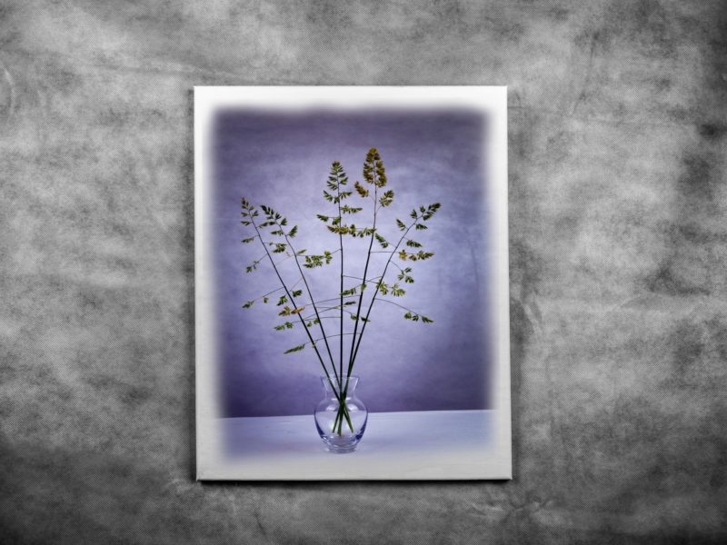 Обои ваза, растения, картина, фон на рабочий стол.