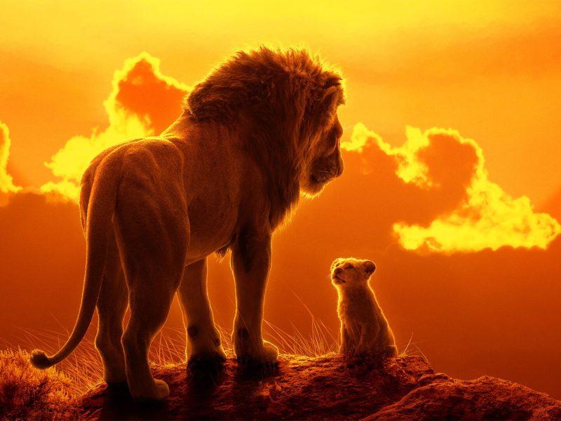Обои Закат, Вечер, Лев, Африка, Хищник, Арт, Art, Король Лев, Симба, Lion, Africa, The Lion King для рабочего стола