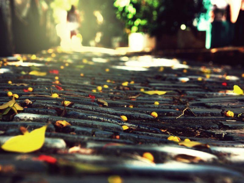 камни, Город, листва, брущатка, осень