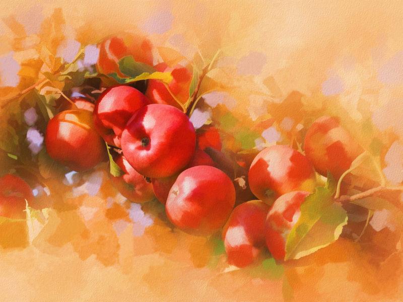 живопись, яблоки, painting, картина, наливные, яблочки, Арт