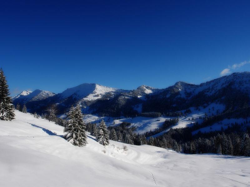 Горы, Пейзажи, Природа, Зима, Леса, Зимние пейзажи, ТВ-шоу
