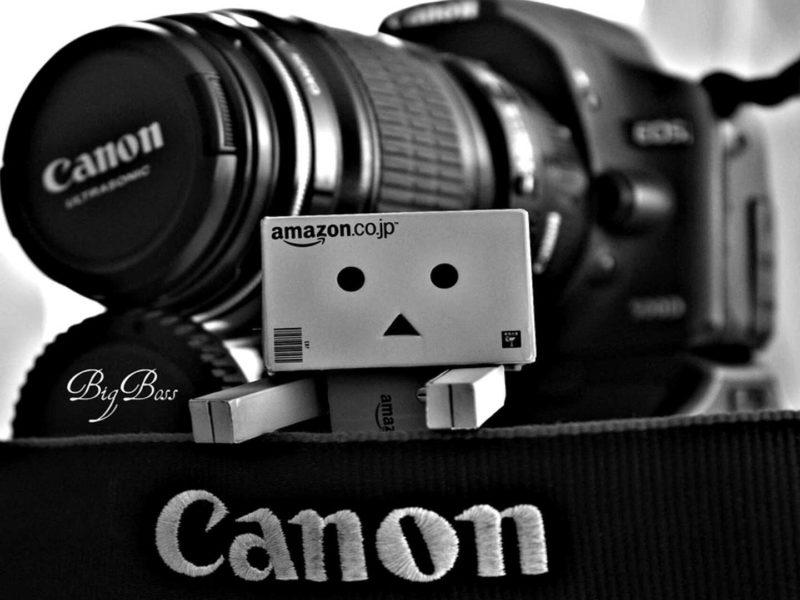 Danbo фотограф