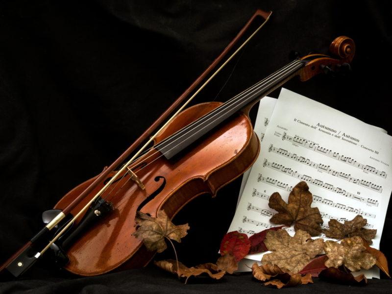 Обои Скрипка, ноты, музыка