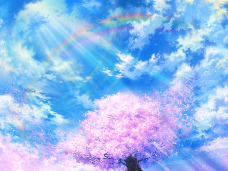 Обои сакура, радуга, природа, tsujiki, облака, Арт, небо