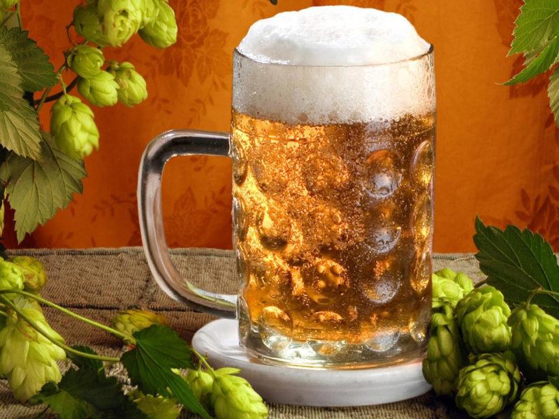 Пиво и солод
