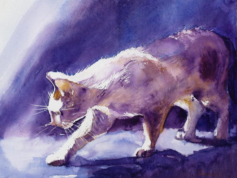 гуашь, Кошки, рисунок