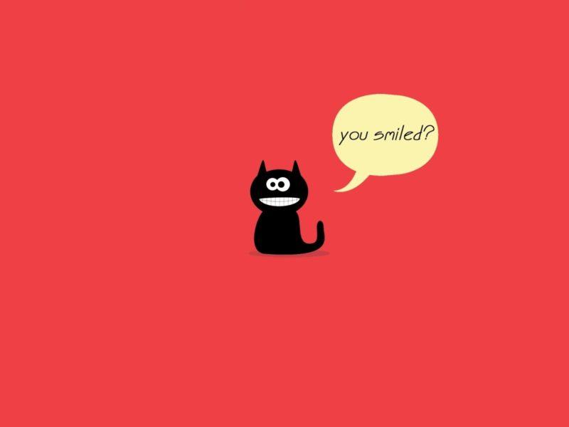 черный кот, smile, красный, кот, выноска, Улыбка
