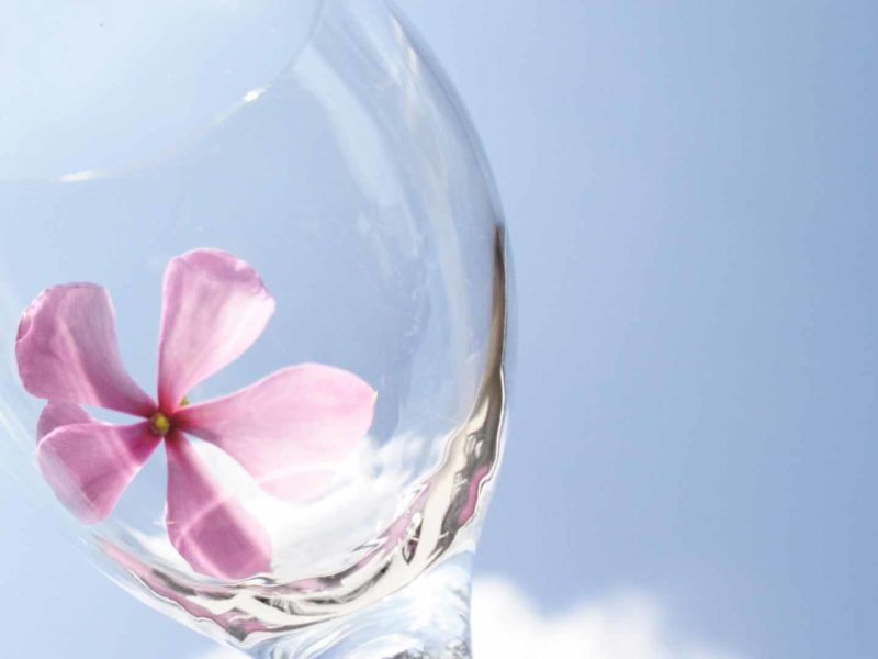Цветок в бокале
