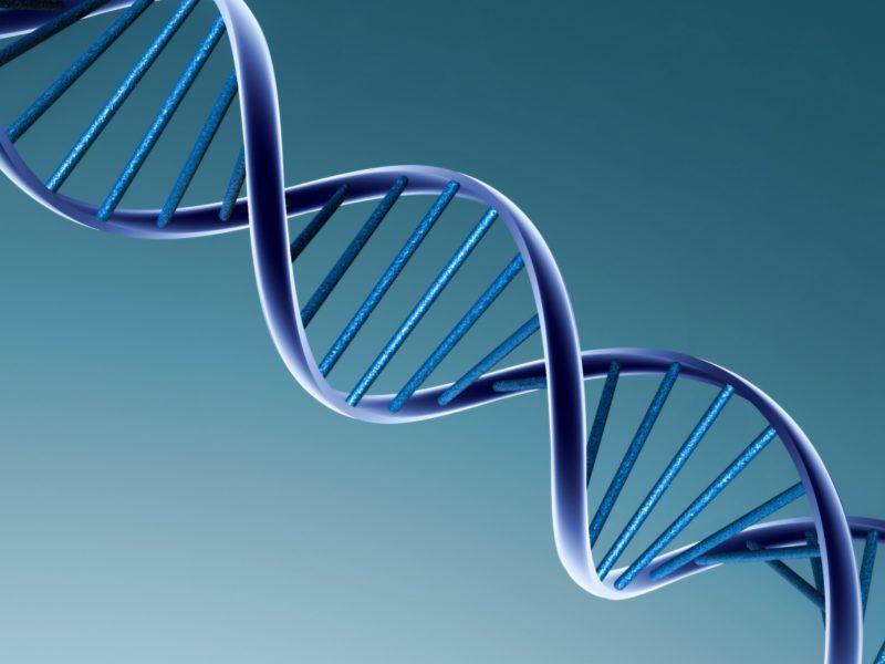 3D вид (3д), ДНК