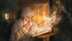 Обои сова, птица, волшебство, книга, старик, Дед Мороз, филин на рабочий стол.