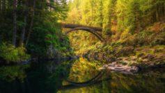 Обои природа, пейзаж, река, берега, леса, мост, осень на рабочий стол.