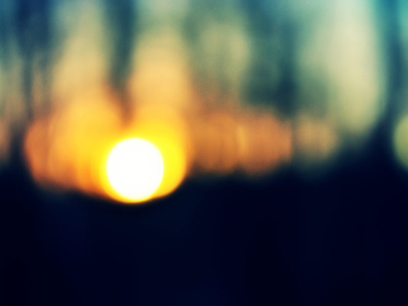 закат, деревья, лес, Солнце