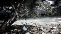 Качели, дерево, берег, камни