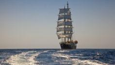 Большой корабль с белыми парусами в поле