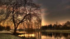 Закат, Пейзажи, Природа, Деревья, Художественный, Отражения
