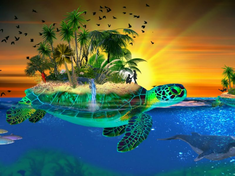 Обои океан, черепахи, остров, влюбленные на рабочий стол.
